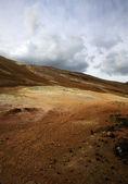 Coloured landscape — Stock Photo