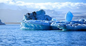 Stunning blue icebergs — Stock Photo