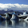 Panoramic view of icebergs and glaciers — Stock Photo