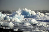 Icebergs on the beach — Stock Photo
