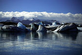 Icebergs and glaciers — Stock Photo