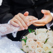 Just Married — Stock Photo #27911097