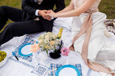 Honeymooners joined hands and sitting on a picnic in the park — Stock Photo