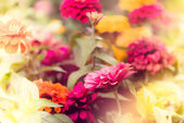 FLoral background with dreamy texture — Stock Photo