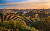 Costigliole d'Asti (Piedmont, Italy): landscape — Stock Photo