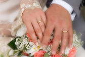 Wedding rings. — Stockfoto