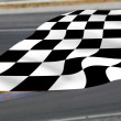 Chequered flag on racetrack. — Stock Photo