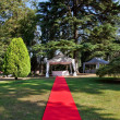 Stock Photo: Red carpet before wedding