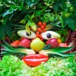 Human face of vegetables and fruits, in the manner of Arcimboldi — Stock Photo