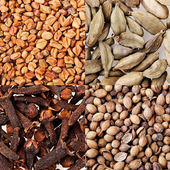 Collage of fenugreek, kardamon, coriander seeds and cloves. — Stock Photo