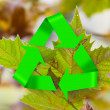 Leaves in autumn with recycle symbol — Stok fotoğraf