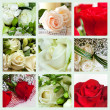 Collage of roses — Stock Photo #28463721