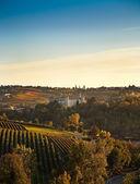 Costigliole d'Asti (Piedmont, Italy): landscape — Stock Photo