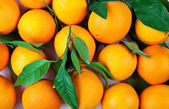 Organic orange background — Stock Photo