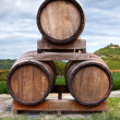 Barrels — Stock Photo #29228601