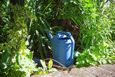 Blue watering can — Stock Photo