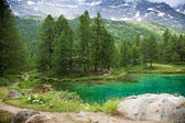 Cervinia, Valle d'Aosta, Italy — Stock Photo