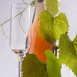 Wine — Stock Photo #29251107