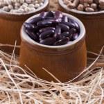 Beans — Stock Photo #31430057