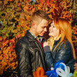 Couple in autumn park — Stock Photo #37855101