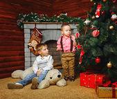 Brothers near Christmas tree — Stock Photo