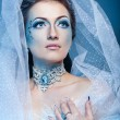 Snow Queen — Stockfoto #40947643