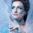 Stock fotografie: Snow Queen