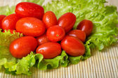 Tomatoes and lettuce — Stockfoto