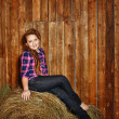 Stock Photo: Girl in rustic barn