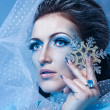 Snow Queen and Snowflake — Stock Photo