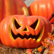 Halloween pumpkins on red Fire truck — Stock Photo #32594765