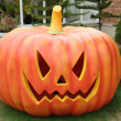 Halloween pumpkins — Stock Photo #32597371