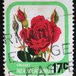 NEW ZEALAND - CIRCA 1975: A stamp printed in New Zealand shows Cresset, series devoted to roses, circa 1975 — Stock Photo