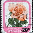 "NEW ZEALAND - CIRCA 1975: A stamp printed in New Zealand from the ""Garden Roses"" issue shows Michele Meilland, circa 1975. — Stock Photo #32759487"
