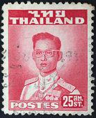 THAILAND - CIRCA 1960: A stamp printed in Thailand shows King Bhumibol Adulyadej, circa 1960 — 图库照片