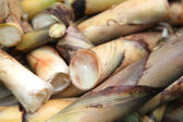 Pile of bamboo shoots — Stock Photo