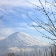 Постер, плакат: View of Mount Fuji from Kawaguchiko lake in march