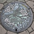 Manhole cover, Osaka japan — Stock Photo #35423555