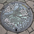 Manhole cover, Osaka japan — Stock Photo
