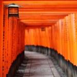 Famous bright orange torii gates of Fushimi Inari Taisha Shrine in Kyoto, Japan — Stock Photo #35521081