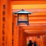 Famous bright orange torii gates of Fushimi Inari Taisha Shrine in Kyoto, Japan — Stock Photo #35521147