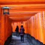 Famous bright orange torii gates of Fushimi Inari Taisha Shrine in Kyoto, Japan — Stock Photo #35521183