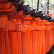 Famous bright orange torii gates of Fushimi Inari Taisha Shrine in Kyoto, Japan — Stock Photo #35521433