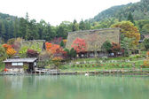 Autumn colored trees in Hida Folk Village takayama japan — Stock Photo