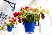 Typical wall planter pots in andalusian village — Stock Photo