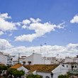 Typical white andalusivillage — Stock Photo #31998359