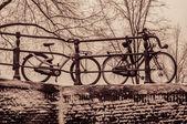 Rowerów w amsterdam — Zdjęcie stockowe