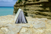 Book at beach reading on a summer time — Stock fotografie