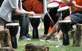 Bongo musicians drumming circle drums and seats — Stock Photo