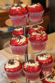 Various sponge cupcakes — Stock Photo